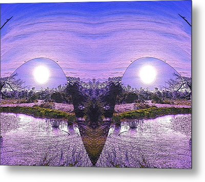 Mirrored Ego Metal Print by Yolanda Raker