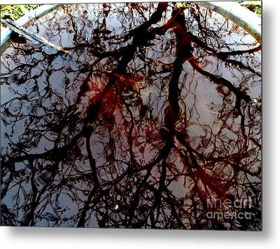 My Reflection Bucket Metal Print by Steven Valkenberg
