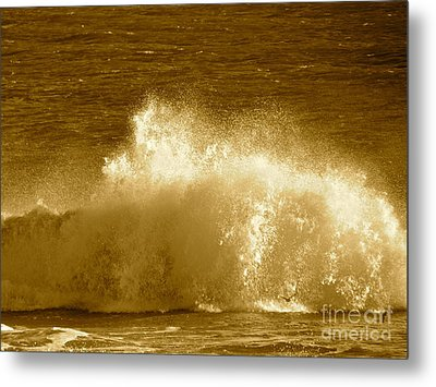 Ocean Life Remembers  Metal Print by Q's House of Art ArtandFinePhotography