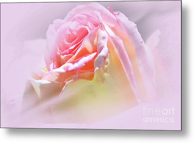 Peaceful Pink Rose Haze Metal Print