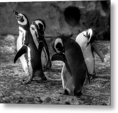 Penguin's Metal Print