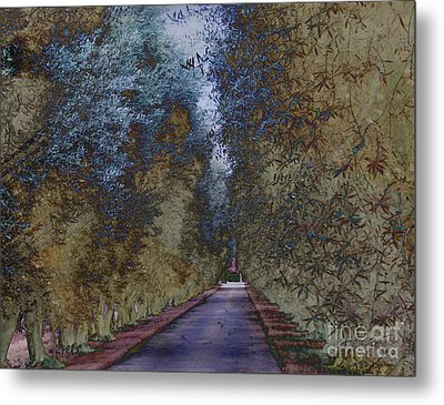 Metal Print featuring the photograph  Serenity   by Irina Hays