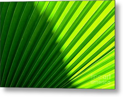Metal Print featuring the photograph  Simply Green by Michelle Meenawong