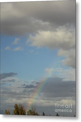 Metal Print featuring the photograph  Skys The Limit by Carla Carson