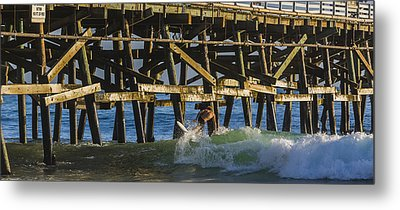Surfer Dude 5 Metal Print by Scott Campbell