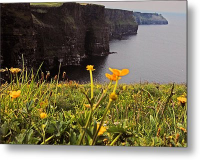 The Cliffs Of Moher Metal Print by Will Burlingham
