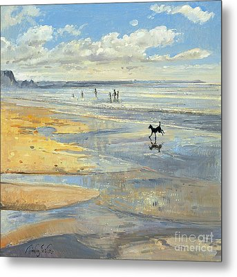 The Little Acrobat  Metal Print by Timothy  Easton