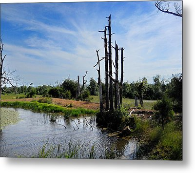 Metal Print featuring the photograph  The Mighty Shall Stand by Yolanda Raker