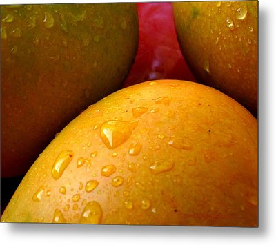 Metal Print featuring the photograph  Tres Mangoes by Greg Allore