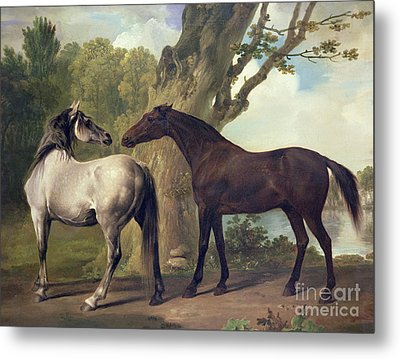 Two Horses In A Landscape Metal Print by George Stubbs