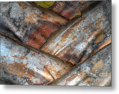 Metal Print featuring the photograph  V Form by Michelle Meenawong