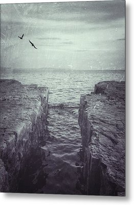 Vermont Lake Champlain Shoreline Black And White Metal Print by Andy Gimino
