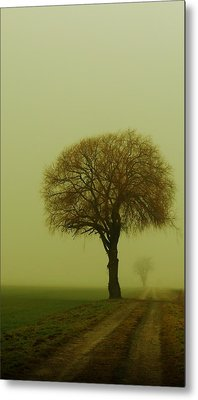 Metal Print featuring the photograph  Walk In The Fog by Franziskus Pfleghart