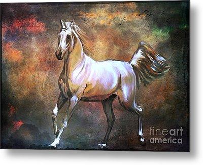 Wild Horse. Metal Print by Andrzej Szczerski