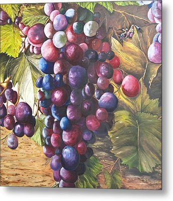Wine Grapes On A Vine Metal Print