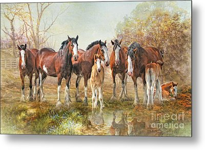 Metal Print featuring the digital art  Yesterdays Reflection by Trudi Simmonds