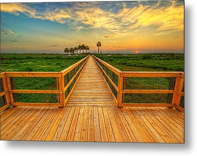 Metal Print featuring the photograph 0061-65-143 by Lewis Mann