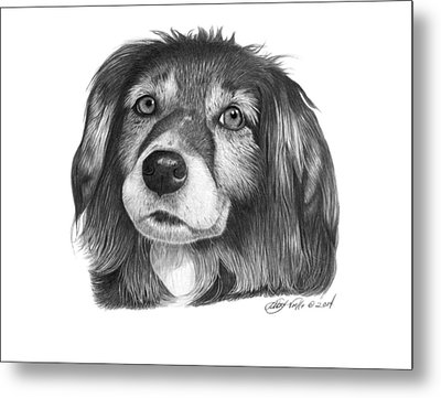 Metal Print featuring the drawing 027 - Miss Mindy by Abbey Noelle