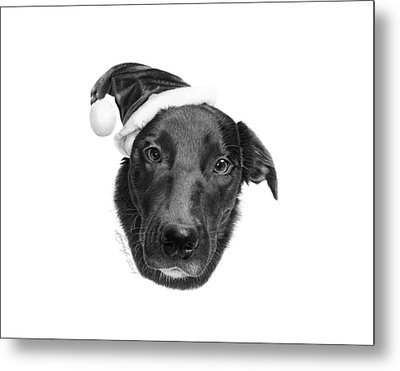 Metal Print featuring the drawing 039 - 2014 Emmie Christmas by Abbey Noelle
