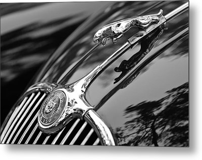 1955 Jaguar Xk 150 Hood Ornament Metal Print