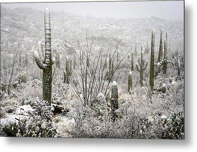A Desert Snow Day  Metal Print