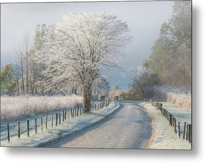A Frosty Morning Metal Print by Chris Moore