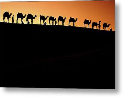 A Group Of Camel Herders Metal Print