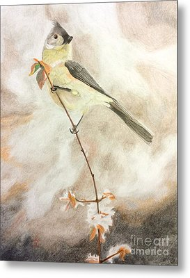 A Lonely Lady Tuft  Metal Print by Ambre Wallitsch