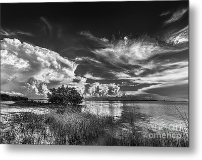 A New Experience Metal Print by Marvin Spates