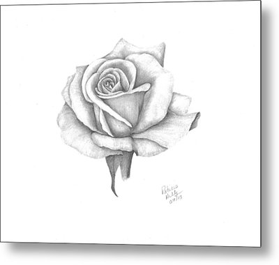 A Roses Beauty Metal Print