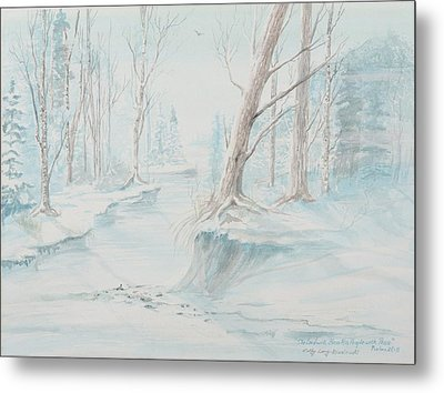 A Winter Path Metal Print by Cathy Long