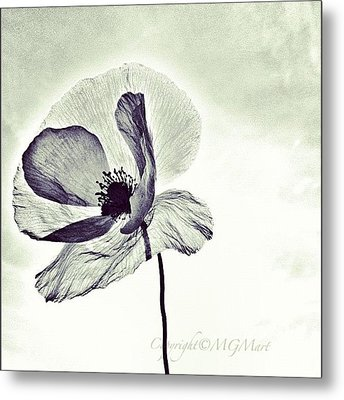 Alone Metal Print by Marianna Mills