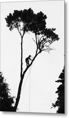 Arborist At Work Metal Print