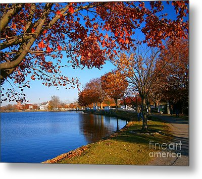 Metal Print featuring the pyrography Autumn At Argyle Park by Holly Martinson