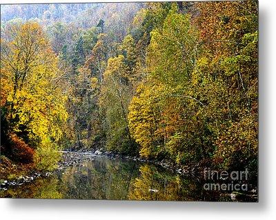 Autumn Elk River Metal Print by Thomas R Fletcher