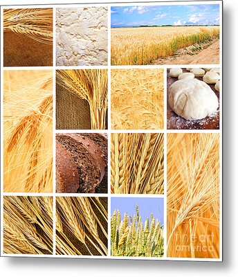 Autumn Harvest Collage Metal Print by Boon Mee