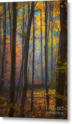 Autumn In Connecticut Metal Print by Diane Diederich