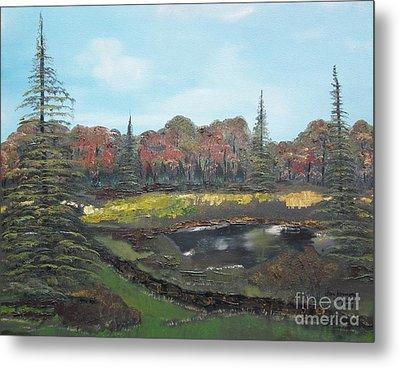 Autumn Landscape Metal Print by Jan Dappen