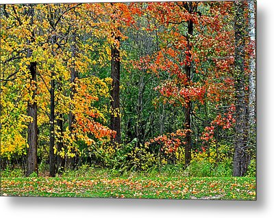 Autumn Landscape Metal Print by Frozen in Time Fine Art Photography