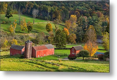 Autumn Light Metal Print by Bill Wakeley