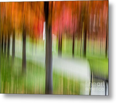 Autumn Park 3 Metal Print by Susan Cole Kelly Impressions