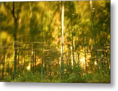 Autumn Reflections In Tennessee Metal Print by Dan Sproul