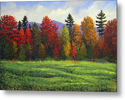 Autumn Trees Metal Print by Frank Wilson