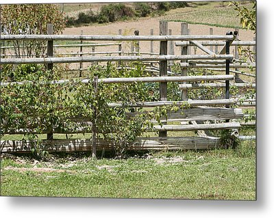 Bamboo Fence In A Pasture Metal Print