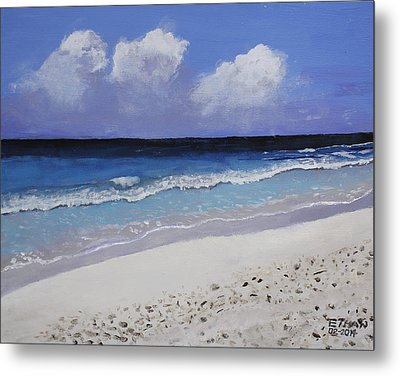 Barbados Beach Metal Print by Ethan Altshuler