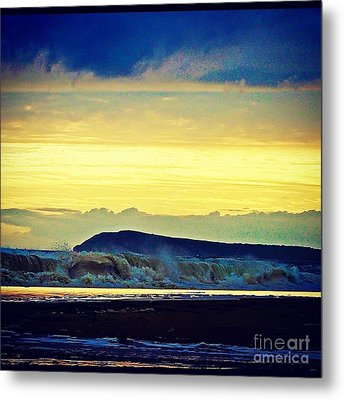 Bass Coast Metal Print