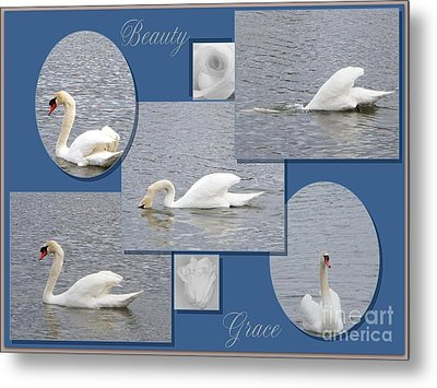 Beauty And Grace Metal Print