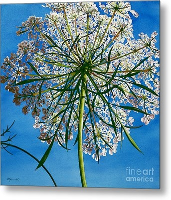 Metal Print featuring the painting Beneath Queen Anne's Lace  by Barbara Jewell