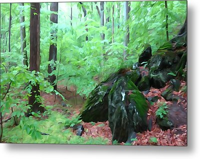 Metal Print featuring the photograph Beside The Trolley Trail by Dana Sohr
