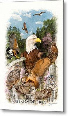 Birds Of Prey Metal Print
